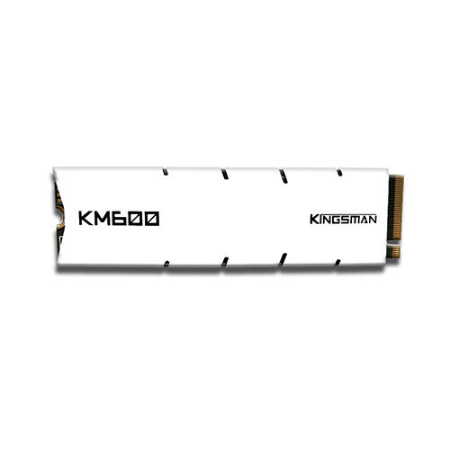 AITC KINGSMAN KM600 256GB m.2 NVMe PCIe SSD